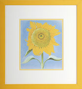 Confetti Sunflower small