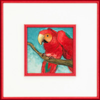 Taffy 172405_parrot small